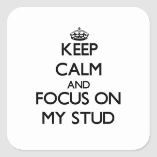 Keep Calm and focus on My Stud Stickers