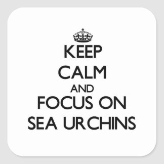 Keep calm and focus on Sea Urchins Square Sticker