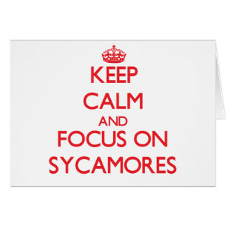 Keep Calm and focus on Sycamores Greeting Cards