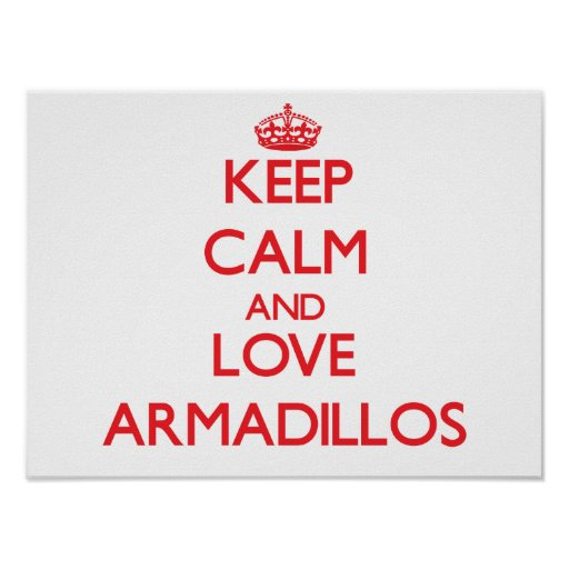 Keep calm and love Armadillos Posters