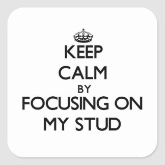 Keep Calm by focusing on My Stud Stickers