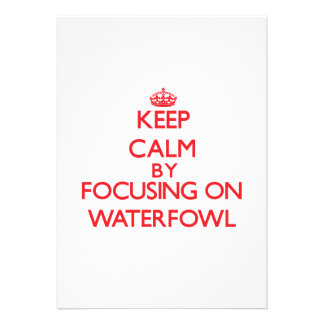 Keep calm by focusing on Waterfowl Announcements