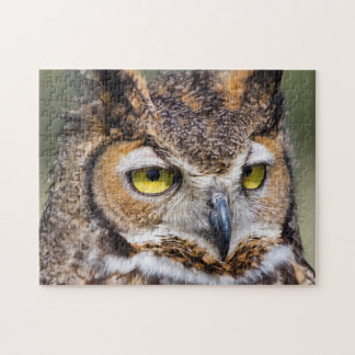 Kendall County, Texas. Great Horned Owl Jigsaw Puzzle