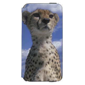 Kenya, Masai Mara Game Reserve, Close-up Incipio Watson™ iPhone 6 Wallet Case