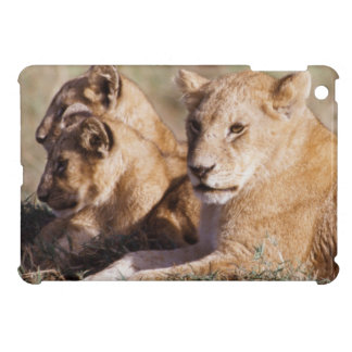 Kenya, Masai Mara, Lion Cubs Cover For The iPad Mini