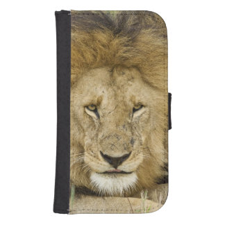 Kenya, Masai Mara. Two lions resting face to Samsung S4 Wallet Case