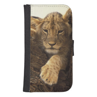 Kenya, Samburu National Game Reserve. Lion cub Samsung S4 Wallet Case