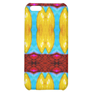 """""""Khajane"""" meaning """"Treasures"""" products iPhone 5C Covers"""