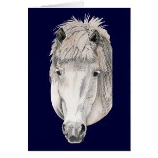 Kind Eyes - Icelandic Horse Cards
