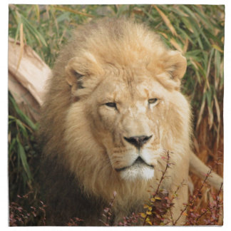 King of the Jungle Napkin