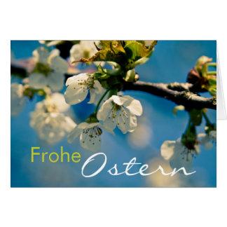 Kirschbluete • Osterkarte Greeting Card