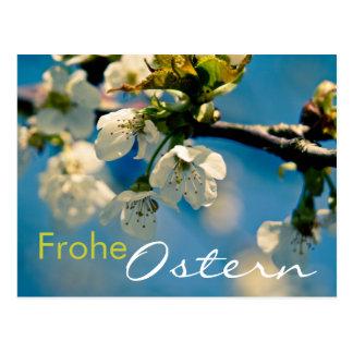 Kirschbluete • Osterpostkarte Post Card