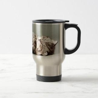 kitten, cat, cute tabby cat, cute cats, cute kitte stainless steel travel mug