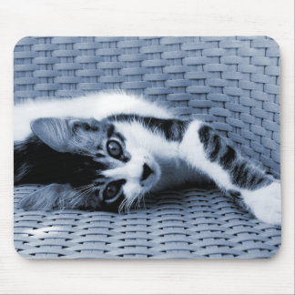 Kitten in Blue and White Mouse Pad