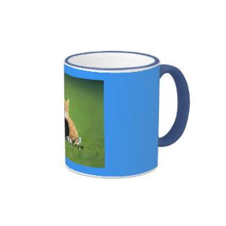 Kitten Love Ringer Mug