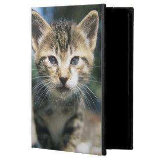 Kitten outdoors case for iPad air