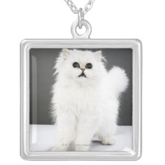 Kitten Portrait Silver Plated Necklace