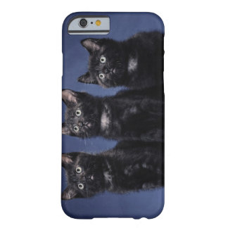 Kittens Barely There iPhone 6 Case