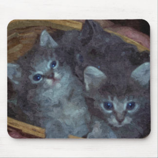 Kittens! Mouse Pad