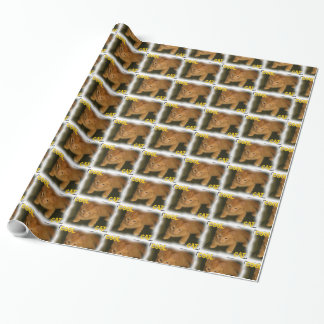 """Kitty """"COOL CAT"""" Wrapping Paper"""