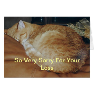 Kitty Curl/Loss of Pet Card