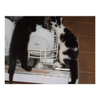 Kitty Dishes Poster