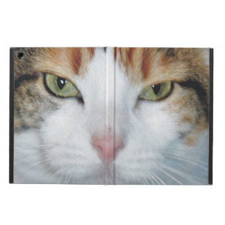 Kitty Is Watching You iPad Air Cover