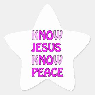 Know Jesus Know Peace No Jesus No Peace In A Pink Star Sticker
