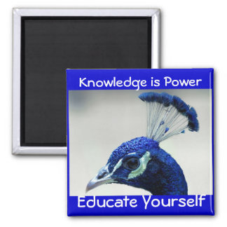Knowledge is Power magnet