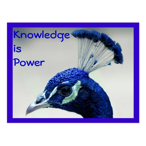 Knowledge is Power postcard