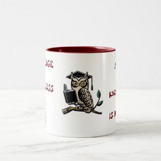 Knowledge is priceless Two-Tone coffee mug
