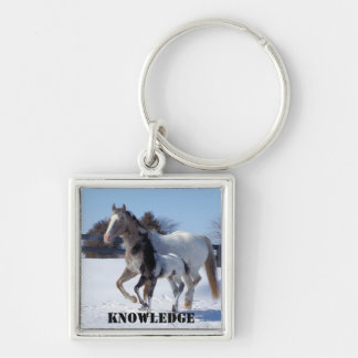 knowledge Silver-Colored square key ring