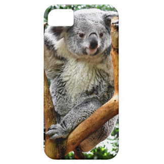 Koala Barely There iPhone 5 Case
