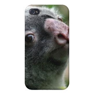 Koala Bear iPhone 4 Covers