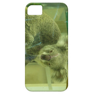 Koala Bear iPhone 5 Case