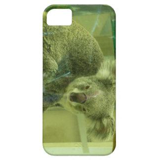 Koala Bear iPhone 5 Case