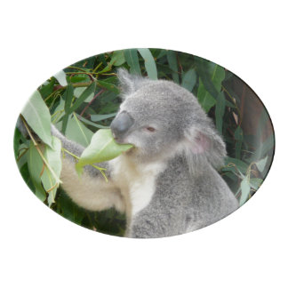 Koala Eating Gum Leaf Porcelain Serving Platter