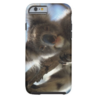 koala tough iPhone 6 case