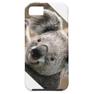 Koala's Rule Tough iPhone 5 Case