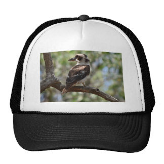 KOOKABURRA RURAL QUEENSLAND AUSTRALIA CAP
