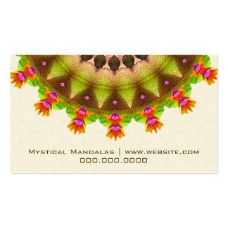 Kooky Kaleidoscope Pack Of Standard Business Cards