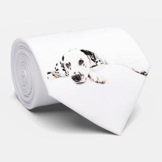 Kravatte Dalmatiner Tie
