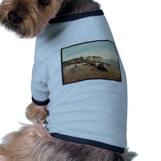 La plage et le casino, Dieppe, France vintage Phot Doggie T-shirt