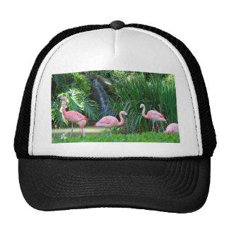 LA Zoo 041011 006 Trucker Hat