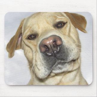 Labrador frontal face portrait mousepads