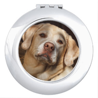 Labrador Retriever 2 Vanity Mirror