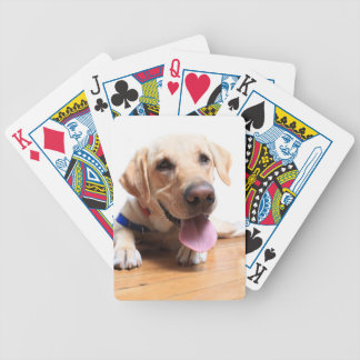 Labrador Retriever Bicycle Playing Cards