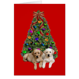 Labrador Retriever Christmas Card Tree6