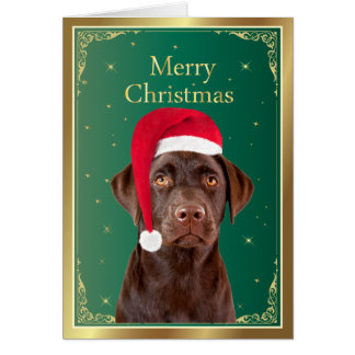 Labrador Retriever dog christmas card