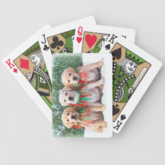 Labrador Retriever Puppy Playing Cards